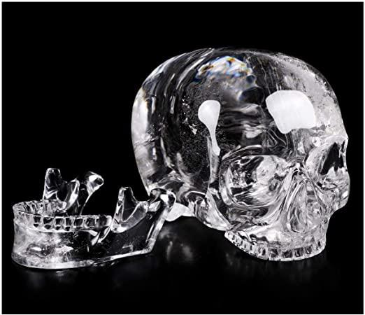 New crystal skull found